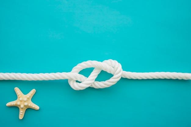 Surface bleue avec étoiles de mer et corde blanche