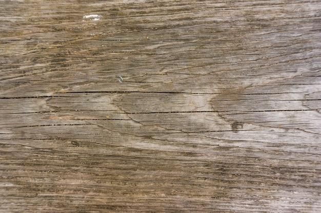 Surface en bois marron - idéale pour un fond frais