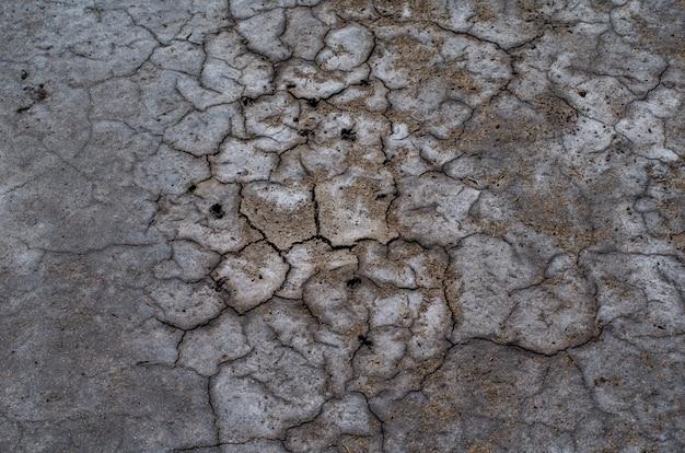 Surface du sol salin sec coloré avec des taches de sel
