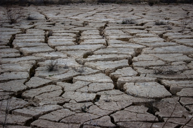 Surface de l'étang fissurée pendant la sécheresse