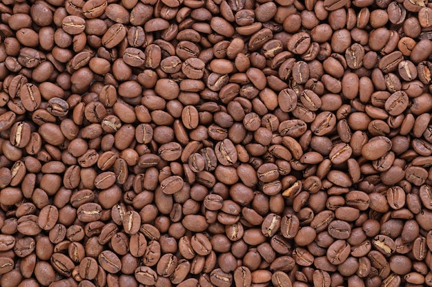 Surface des grains de café