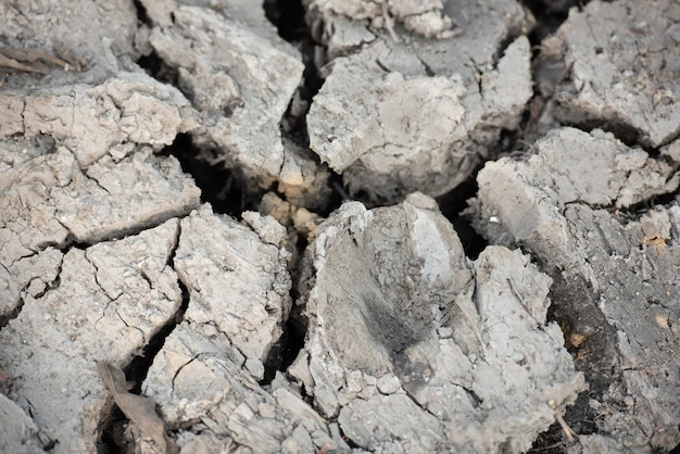 Surface de sol de sécheresse fissurée