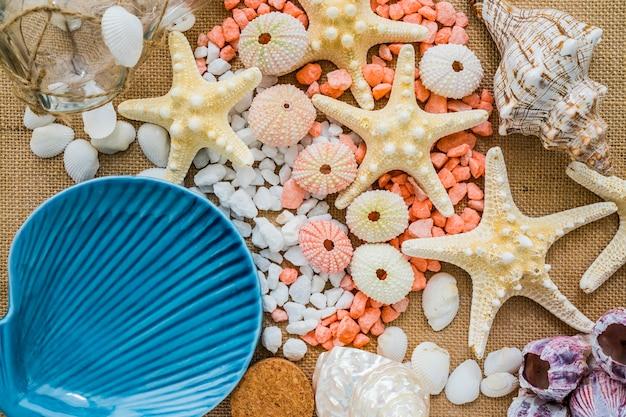 Surface en toile avec coquillage bleu et autres éléments marins