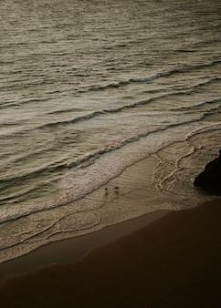 Surfeurs debout au bord de la mer