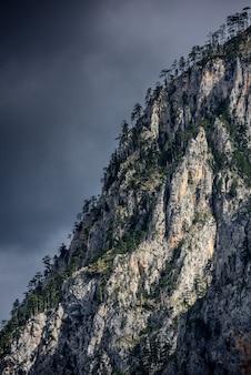 Surplombant les falaises avec un arbre. détail de haute montagne paysage.