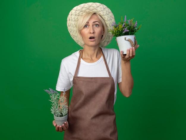Surpris femme jardinière blonde d'âge moyen en uniforme portant un chapeau tenant des pots de fleurs en levant
