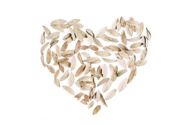 Symbole du coeur fait de feuilles séchées fond de saint valentin