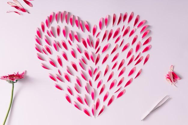 Symbole du coeur fait de pétales de fleurs roses