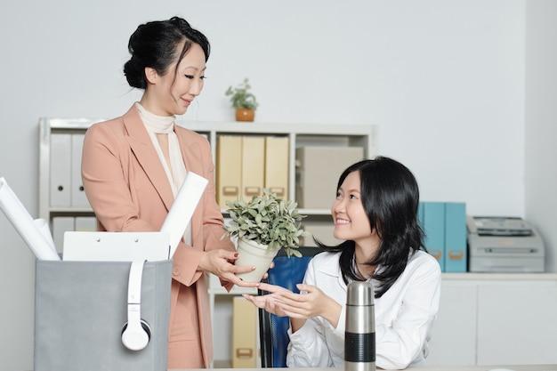 Sympathique jeune femme souriante présentant une plante en pot à un nouveau collègue lors de son premier jour de travail