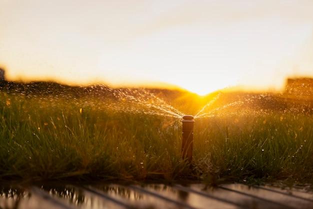 Système d'arrosage automatique arrosant la pelouse au coucher du soleil.