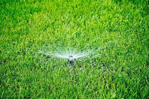 Système d'arrosage automatique arrosant la pelouse sur fond d'herbe verte