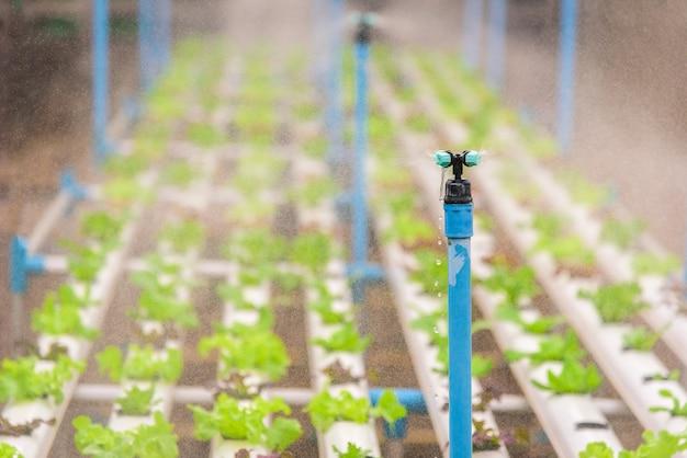 Système d'arrosage d'eau fonctionnant dans une ferme de culture hydroponique