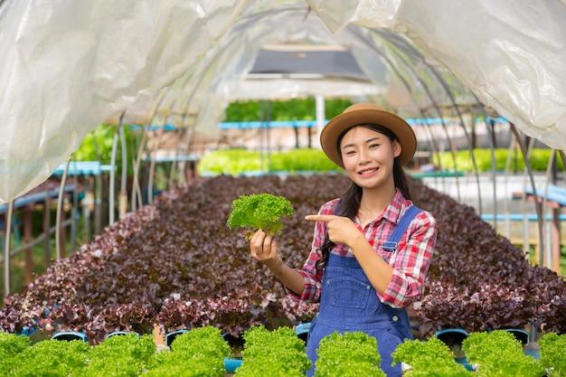 Système hydroponique, planter des légumes et des herbes sans utiliser le sol pour la santé