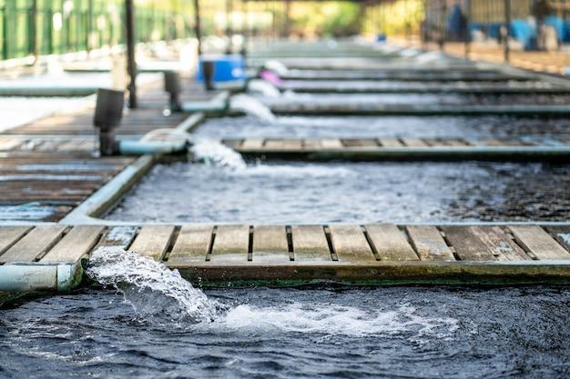 Système de traitement du débit d'eau à partir du tuyau de la pompe à eau.