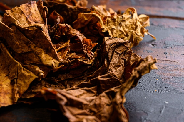 Tabac à feuilles sèches close up nicotiana tabacum et feuilles de tabac sur de vieilles planches de bois table vue côté sombre espace pour le texte