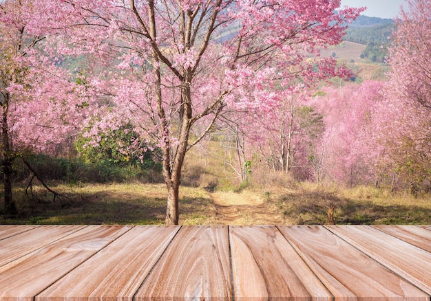 Table en bois brun vide pour le produit d'affichage et beau fond de nature fleur rose sakura.