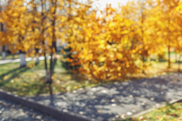Table floue du parc automne avec bokeh
