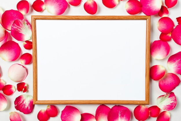 Tableau blanc sur pétales de rose