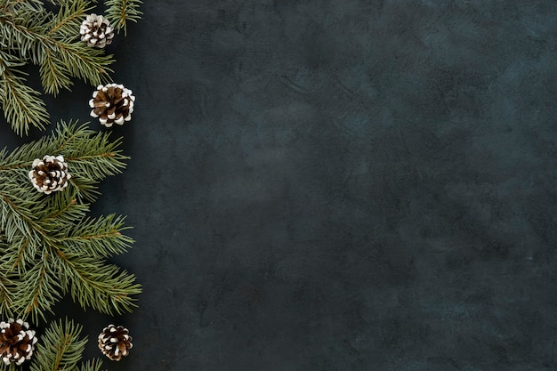 Tableau noir avec des aiguilles de pin et des cônes