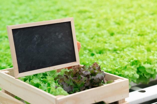 Tableau noir espace vide sur légume hydroponique pour ajouter du texte