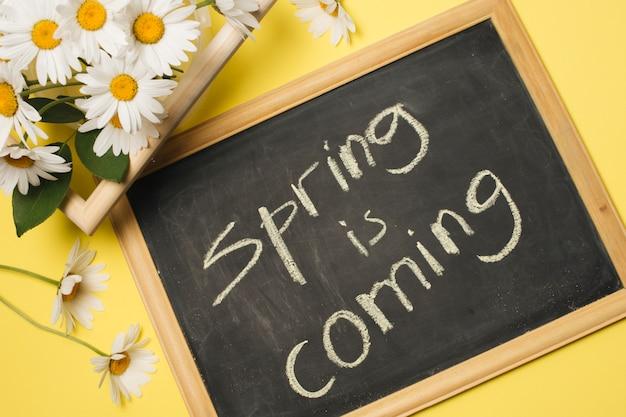 Tableau avec titre près des fleurs de marguerites fraîches