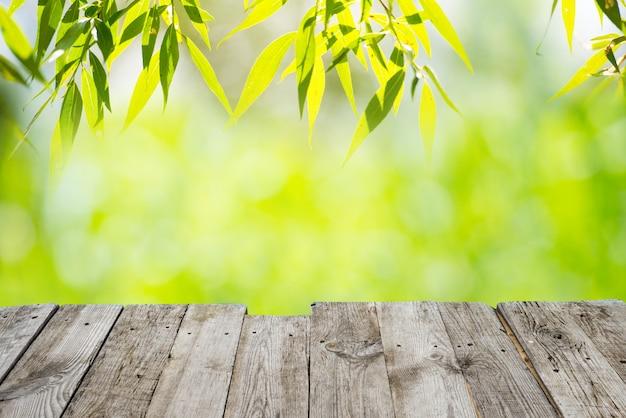 Des taches lumineuses vertes et jaunes peuvent être utilisées pour l'arrière-plan