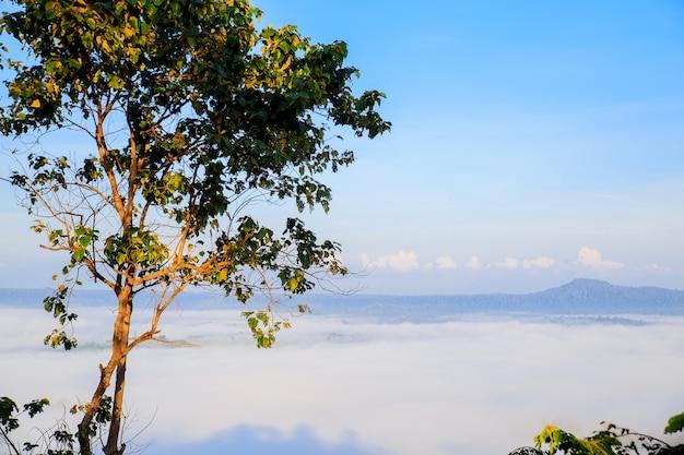 Takhian ngo mountain view avec la mer de brume dans la matinée et le crépuscule du lever du soleil en t