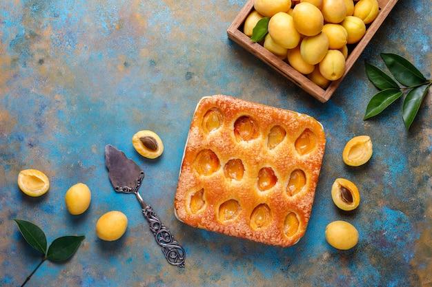Tarte aux abricots d'été dessert de fruits délicieux fait maison