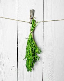 Tas d'aneth frais accroché à une ficelle sur un mur en bois blanc