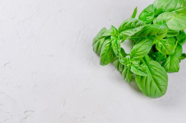 Tas de basilic vert frais isolé