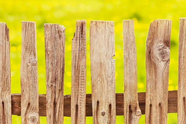 Des tas de bois dans le pré