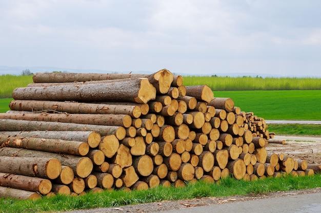 Un tas de bûches de bois repose sur l'herbe près de la route. le problème de la déforestation. problème écologique.