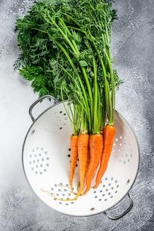 Tas de carottes fraîches lavées avec des feuilles vertes dans une passoire
