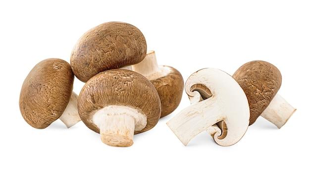 Tas de champignon sur fond isolé blanc