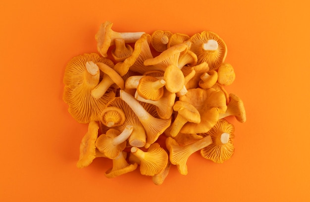 Tas de chanterelles fraîches crues sur couleur orange