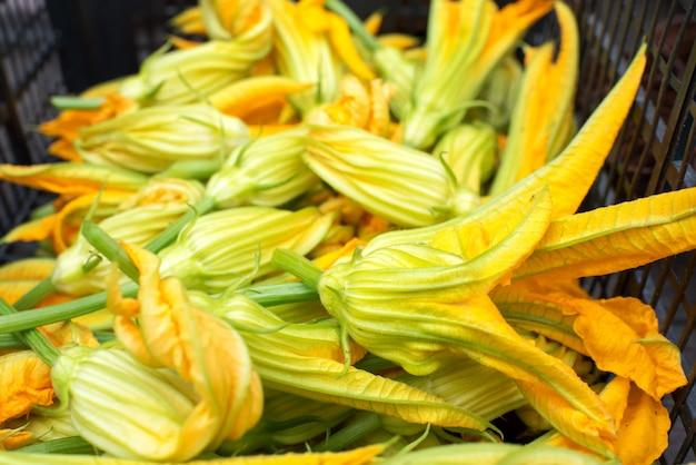 Tas de courgettes fraîches cueillies ou de fleurs de courgettes
