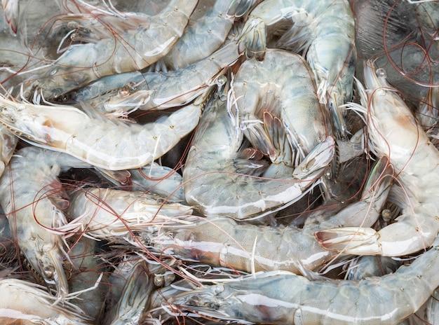 Tas de crevettes fraîches avec le glaçon.