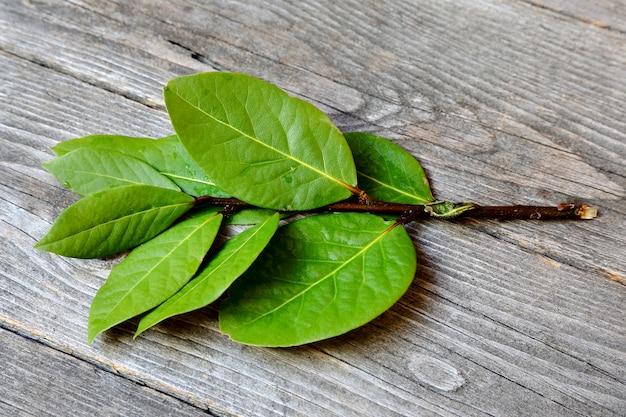 Tas de feuilles de laurier ou sweet bay sur une table en bois gris