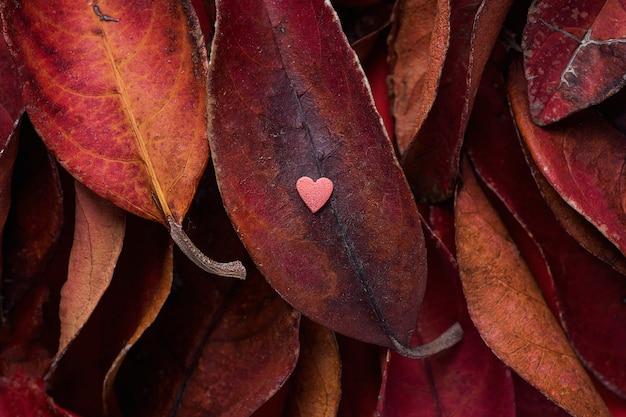 Tas de feuilles rouge foncé