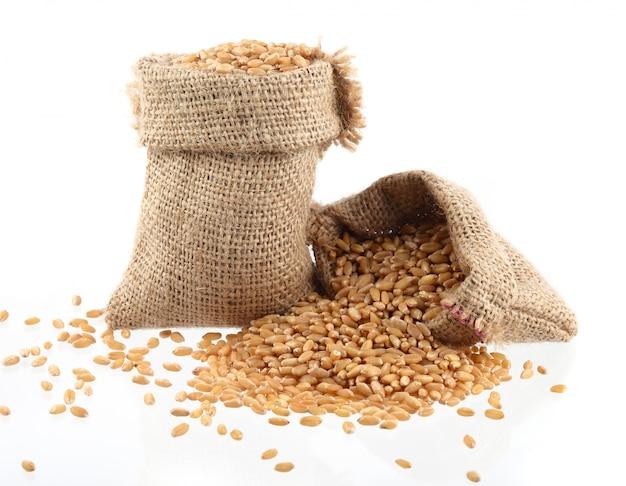 Tas de grains de blé sur fond. fermer