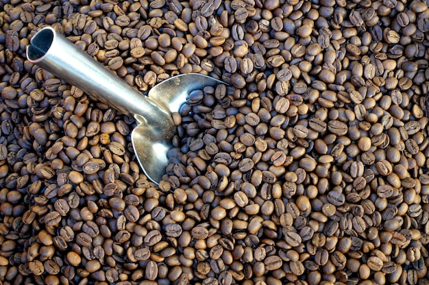 Tas de grains de café avec une spatule