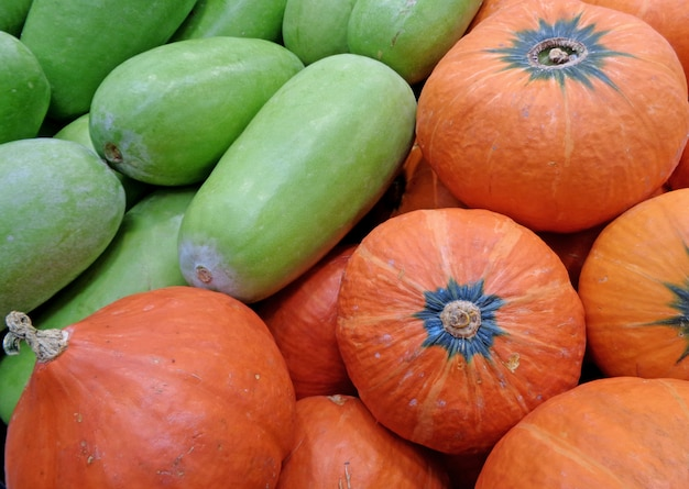 Tas de melons d'hiver vert clair et de citrouilles orange vif