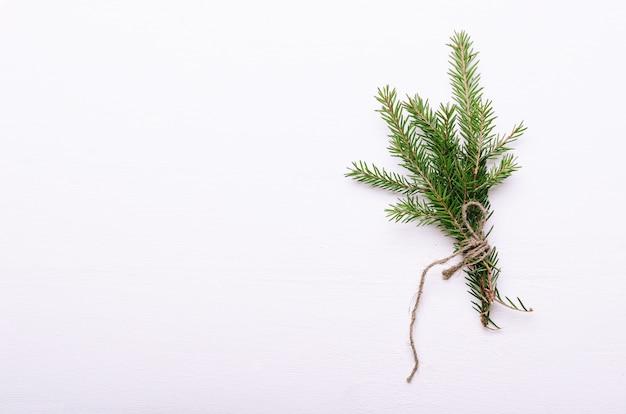 Un tas de petites branches épineuses de sapin à feuilles persistantes enveloppées dans une corde sur fond blanc.