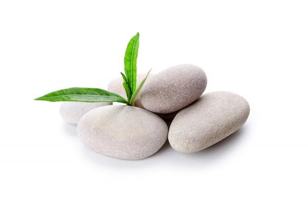Tas de pierres et de feuilles vertes