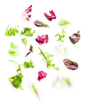 Tas de salade verte de feuilles saines sur blanc