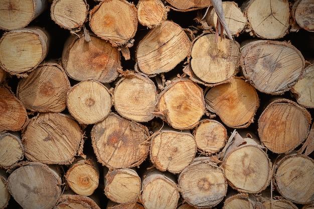 Tas de texture de bûche de bois coupé