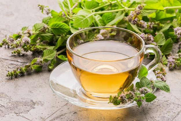 Tasse de boisson au thé avec des feuilles fraîches de mélisse de menthe poivrée