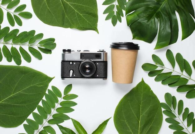 Tasse à café en carton artisanal jetable, appareil photo rétro sur fond blanc avec des feuilles tropicales vertes