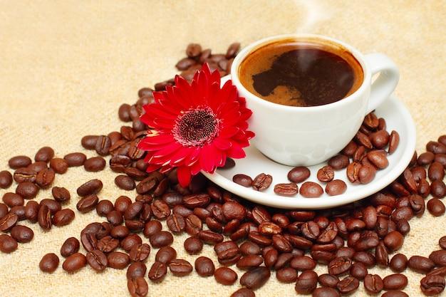Tasse à café, haricots, fleur rouge