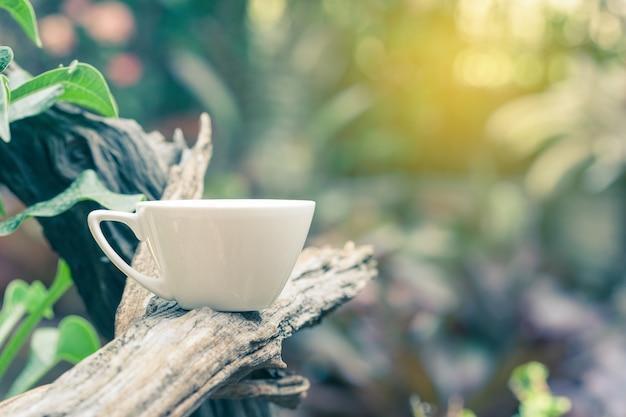 Tasse de café ou de thé sur la branche